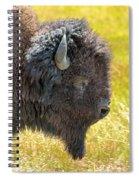 Buffalo Portrait Spiral Notebook