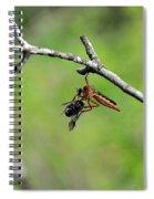 Bug Eat Bug Spiral Notebook