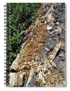 Bug Filled Bear Clawed Log Spiral Notebook