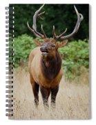 Bugler Spiral Notebook