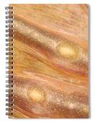 Bull Frog Foot Spiral Notebook
