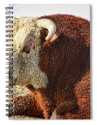 Bull It Is What It Is Spiral Notebook