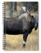 Bull Moose, Peter Lougheed Provincial Spiral Notebook
