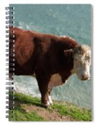 Bull On The Edge Spiral Notebook