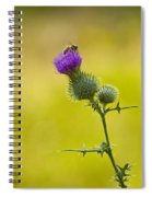 Bull Thistle With Bumble Bee Spiral Notebook