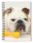 Bulldog With Plastic Chew Toy Spiral Notebook