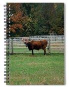 Bully Bull Spiral Notebook