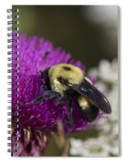 Bumble Bee And Bristle Thistle Spiral Notebook