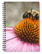 Bumble Bee Feeding On A Coneflower Spiral Notebook
