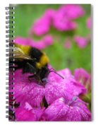 Bumble Bee Searching The Pink Flower Spiral Notebook