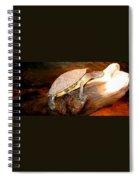 Bump On A Log Spiral Notebook