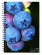 Bunch Of Blueberries Spiral Notebook