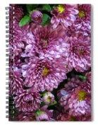 Bunch Of Chrysanths Spiral Notebook
