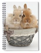 Bunnies A Basket Spiral Notebook