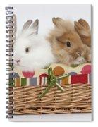 Bunnies In A Basket Spiral Notebook