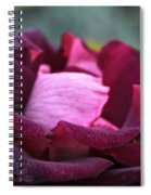 Burgundy Velet Spiral Notebook