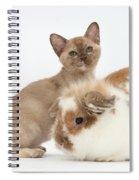 Burmese Kitten And Rabbit Spiral Notebook