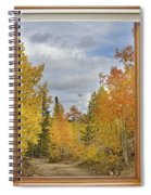Burning Autumn Aspens Back Country Colorado Window View Spiral Notebook