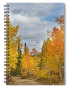 Burning Orange And Gold Autumn Aspens Back Country Colorado Road Spiral Notebook