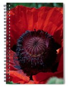 Burning Poppy Spiral Notebook