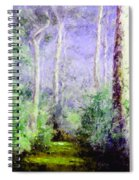 Bush Trail At The Afternoon Spiral Notebook