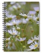Bushy Astor Spiral Notebook