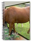 Busting Loose Spiral Notebook