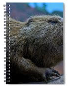 Busy Beaver Spiral Notebook