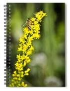 Busy Bee On Yellow Wildflower Spiral Notebook