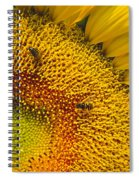 Busy Sunflower Spiral Notebook