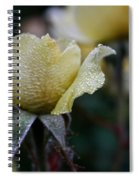 Buttercream Petals Spiral Notebook
