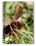 Butterflied Spiral Notebook