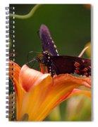 Butterflies Are Free... Spiral Notebook