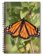 Butterfly - Monarch - Resting Spiral Notebook