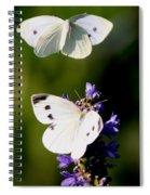 Butterfly - Visiting Spiral Notebook