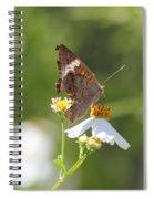 Butterfly 3 Spiral Notebook