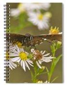 Butterfly 3319 Spiral Notebook