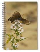 Butterfly 3321 Spiral Notebook
