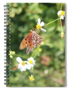Butterfly 46 Spiral Notebook