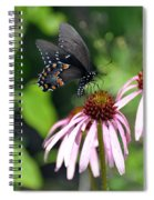 Butterfly And Coine Flower Spiral Notebook