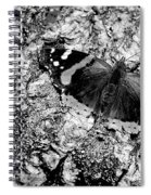 Butterfly Bark Black And White Spiral Notebook
