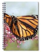 Butterfly Beauty - Monarch IIi Spiral Notebook