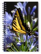 Butterfly Catcher Spiral Notebook