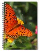Butterfly Diaries IIi Spiral Notebook