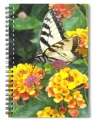 Butterfly Dining Bdwc Spiral Notebook