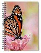 Butterfly Garden IIi Spiral Notebook