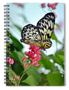 Butterfly Glow Spiral Notebook