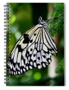 Butterfly II Spiral Notebook
