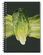 Butterfly Lettuce Spiral Notebook