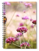 Butterfly - Monarach - The Sweet Life Spiral Notebook
